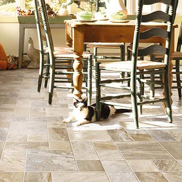 Adirondack / Dusty Canyon