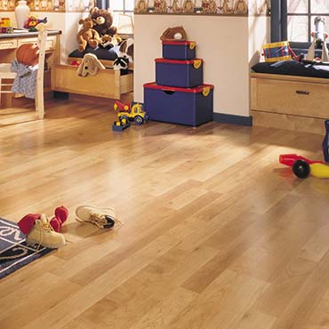 Autumn Meridian Cherry